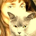 Про кота :))