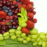 Преимущества живого питания- сравнительный анализ.