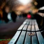 Одиночество- сволочь?