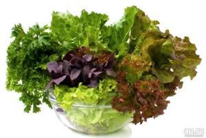 zelen-svezhaya-s-ogoroda-salat-petrushka-portulak-1-8028472